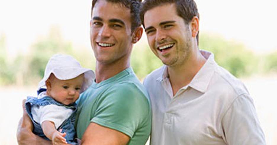 case sudies of gay adoption