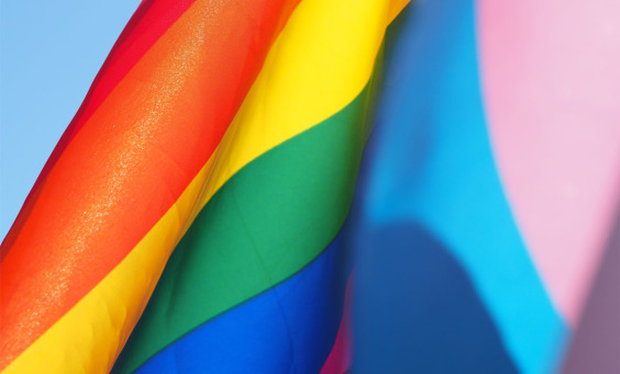 Picture of the LGBT pride flag